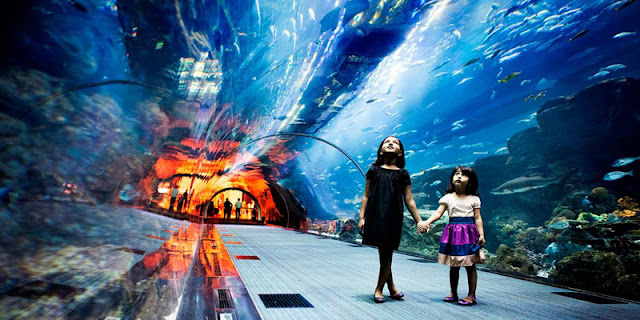 Aquarium and Dubai Underwater Zoo