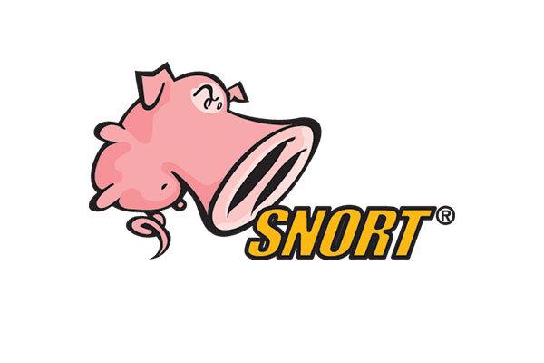 IDS Snort Bot Telegram Menggunakan Bash Shell di Server GNU/Linux