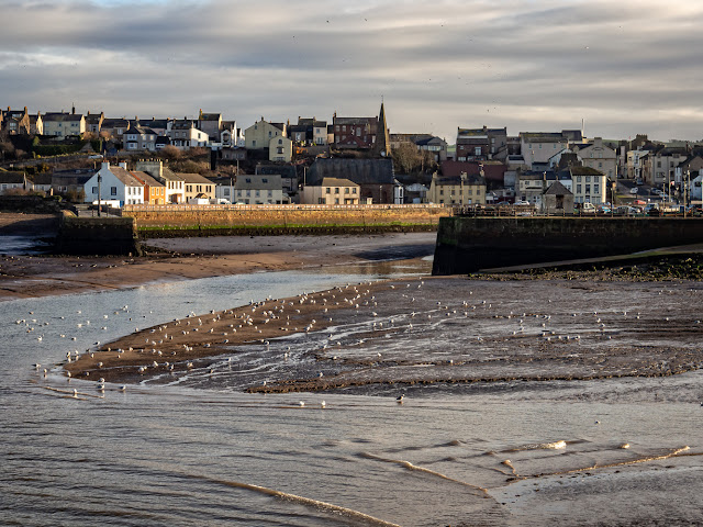 Photo of Maryport from across the basin as the tide comes in