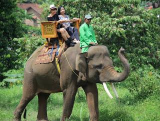 Wisata Lampung -Taman Wisata Lembah Hijau, Destinasi Wisata Keluarga Favorit Dan Hits di Bandar Lampung