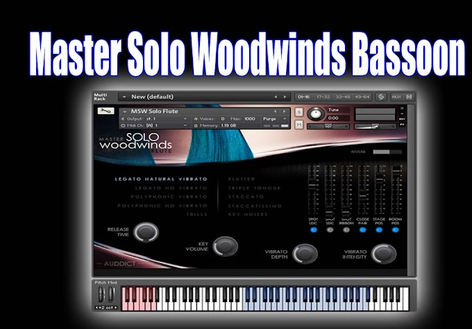 Master Solo Woodwinds Bassoon by Auddict - KONTAKT