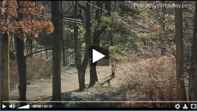 CLIC PARA VER VIDEO Conociendo a Ray (3 Generaciones) - About Ray (3 Generations) - PELICULA - EEUU - 2015