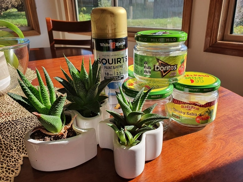 How to Upcycle Empty Doritos and Old El Paso Salsa Jars into Stylish Succulents New Home