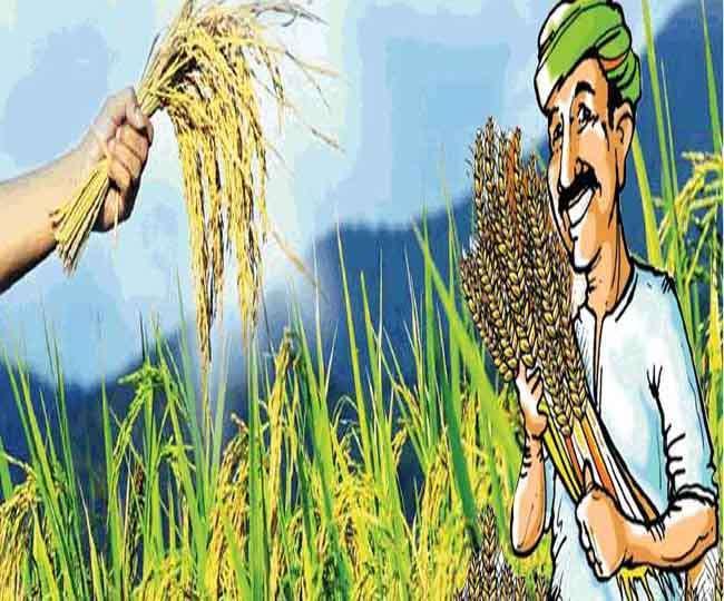 फसल बीमा :भ्रष्टाचार निजी मामला कैसे, पूछा किसान सभा ने
