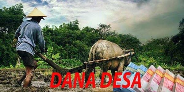 Aceh Terima Dana Desa Rp.3,8 Triliun Lebih, Inilah Alokasi Per Kabupaten Kota