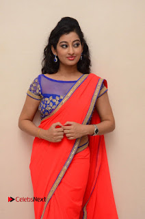 Actress Tejaswini Pictures in Saree at Pratikshanam Audio Launch  0022.JPG
