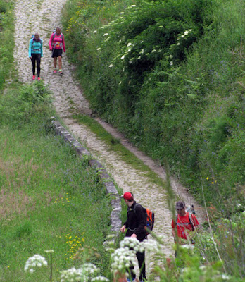 peregrinos de Santiago caminhando