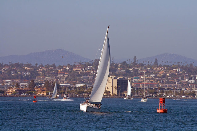 Sailboats in San Diego Bay