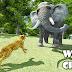 Wild Cheetah Angry Simulator