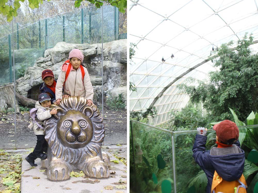 schönbrunn, aviary kids