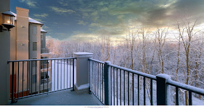 Snow covered trees of the Haverford Reserve park land from one of the residences at Athertyn