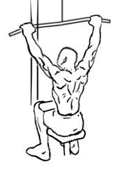 v shaped back