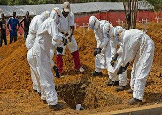 Estimated 319 people dead as Congo Ebola outbreak worsens