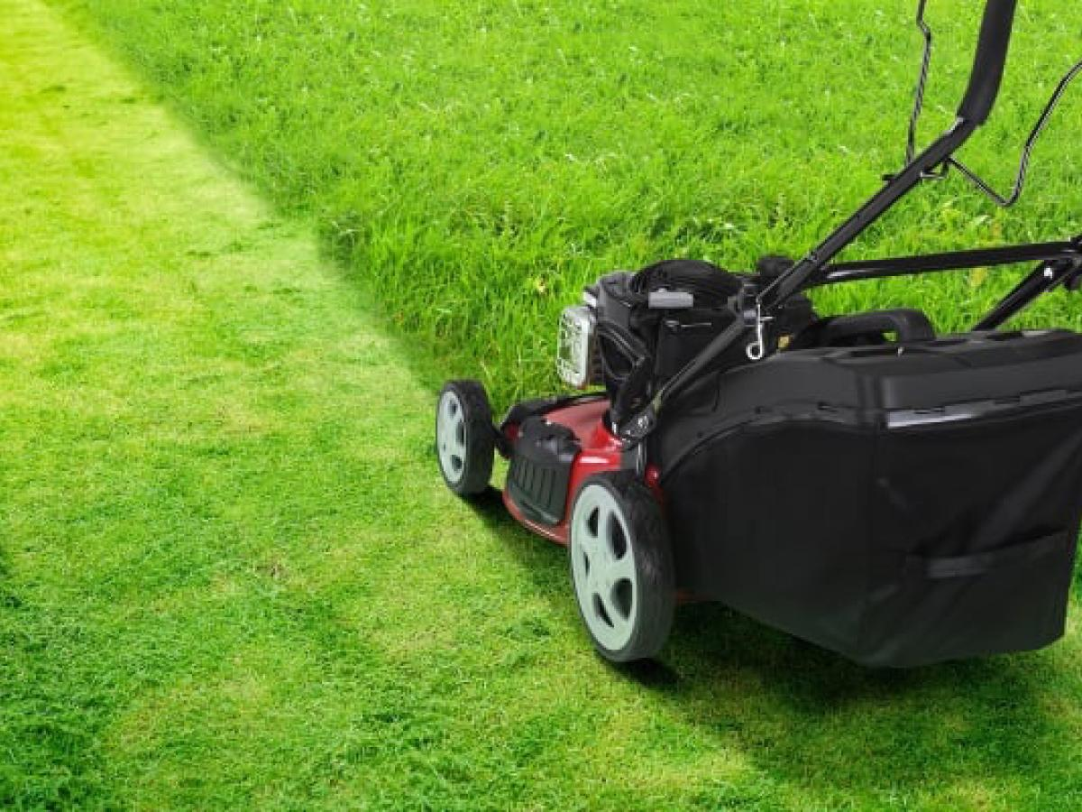 Can I Turn My Lawnmower Into a Mulching Mower? - Best Manual