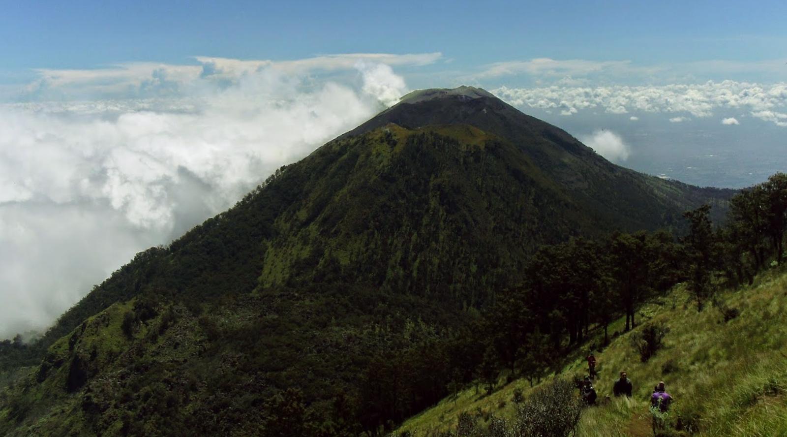 Padang cantik pemandangan Gunung Suket (2.950 mdpl) - Banyuwangi