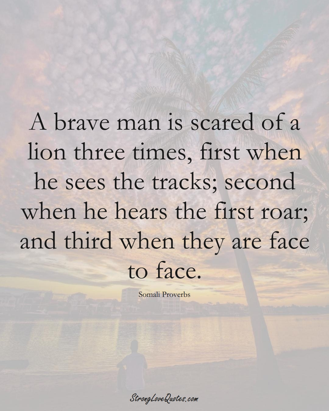 A brave man is scared of a lion three times, first when he sees the tracks; second when he hears the first roar; and third when they are face to face. (Somali Sayings);  #AfricanSayings