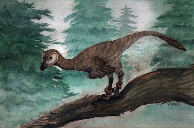 My life reconstruction of Pectinodon bakkeri in watercolors.  These dinosaurs show evidence of having been adept at hunting small prey like mammals and reptiles, including snakes.