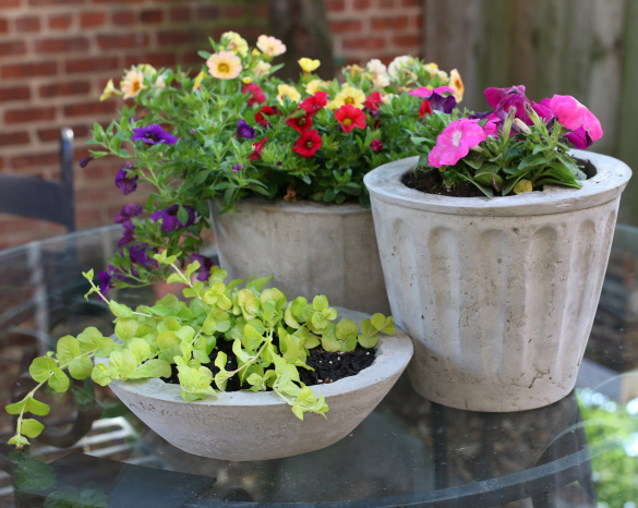 Over on eHow: DIY Cement Flower Pots | 17 Apart