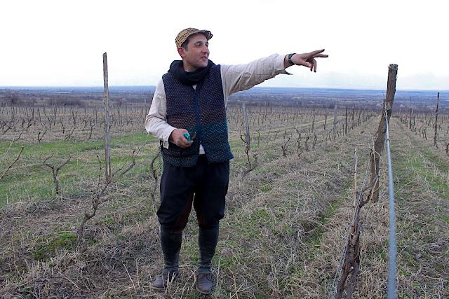 Nika, wine maker in Georgia,