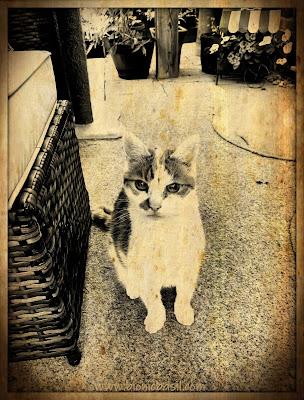 Amber's Outdoor Selfie ©BionicBasil® Puzzle