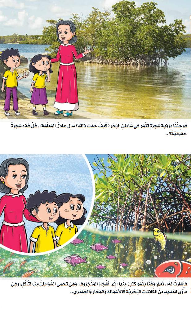 قصص الاستماع للصف الثانى الابتدائى منهج اللغة العربية الجديد ترم أول 2020 16