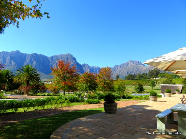 The Winelands, Sth Africa
