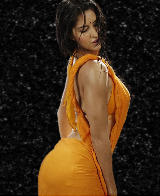 Katrina Kaif in a Sexy Saree