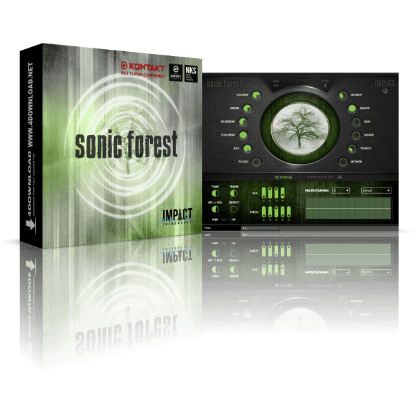 Sonic Forest KONTAKT Library