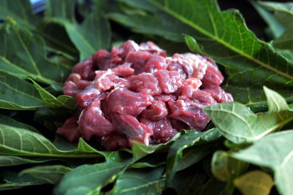 daun pepaya untuk daging