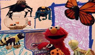 Elmo's World Bugs song