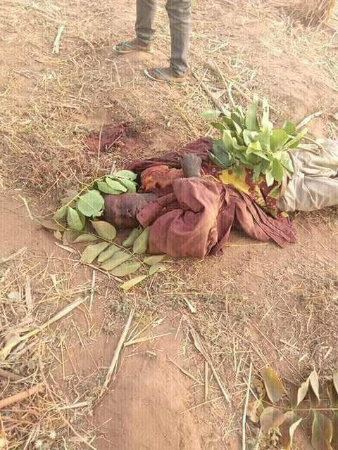 Photos: Police confirm killing of seven persons in night attack on Nasarawa village