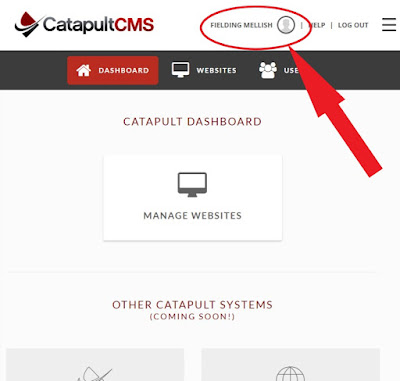 individual user dashboard in Catapult