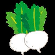 カブのイラスト(野菜)