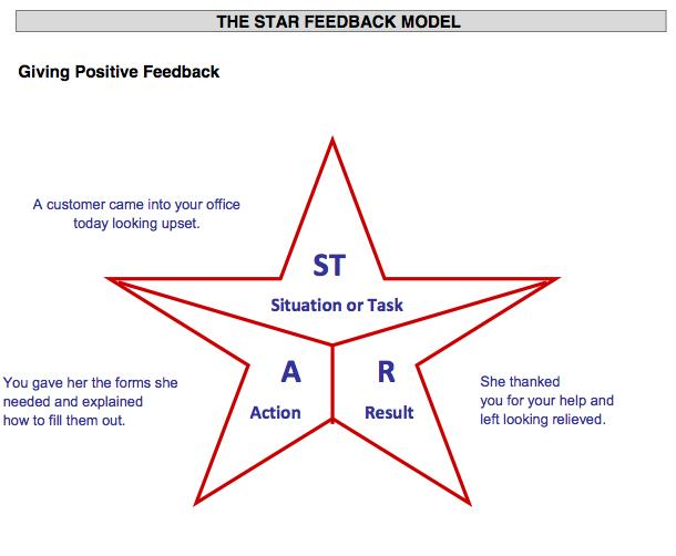 Geribildirim - STAR Modeli