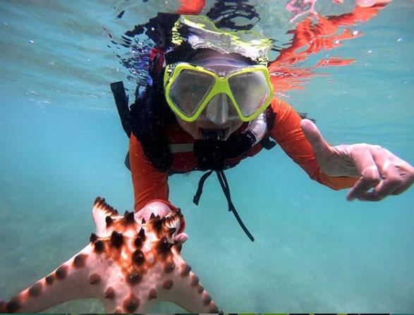 Diving di Kepulauan Derawan