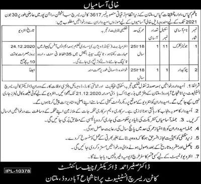 Central Cotton Research Institute Latest Jobs in Multan
