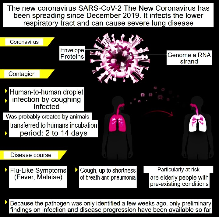 The new coronavirus SARS-CoV-2 The New Coronavirus has been spreading since December 2019.