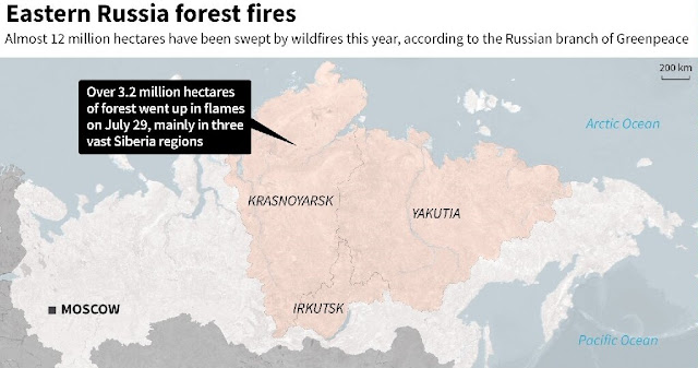 Siberia forest fires spark potential 'disaster' for Arctic