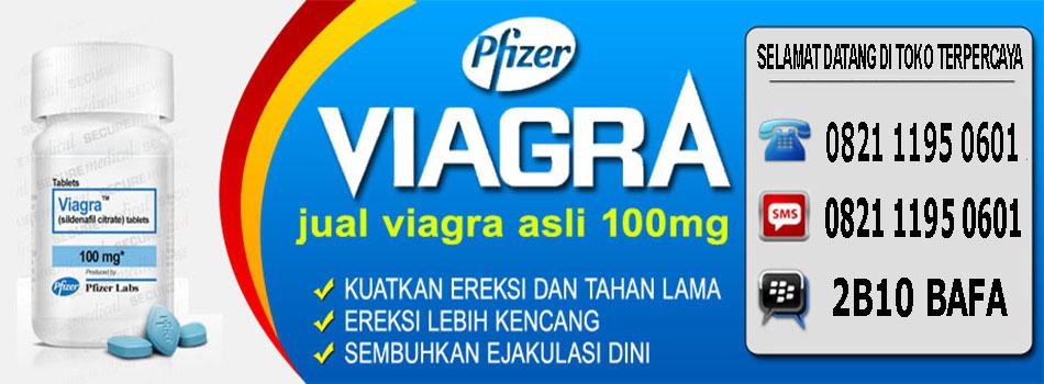 viagra di makassar viagra usa asli obat kuat pria alami