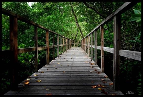 Lirik Hati: Jalan Panjang - Nicky Astria