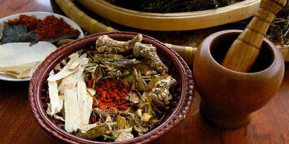Herbologi: Penyembuhan dengan Tanaman Herbal
