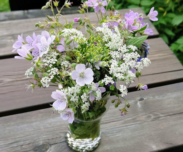 Suomen luonnon kukat tyynyn alle