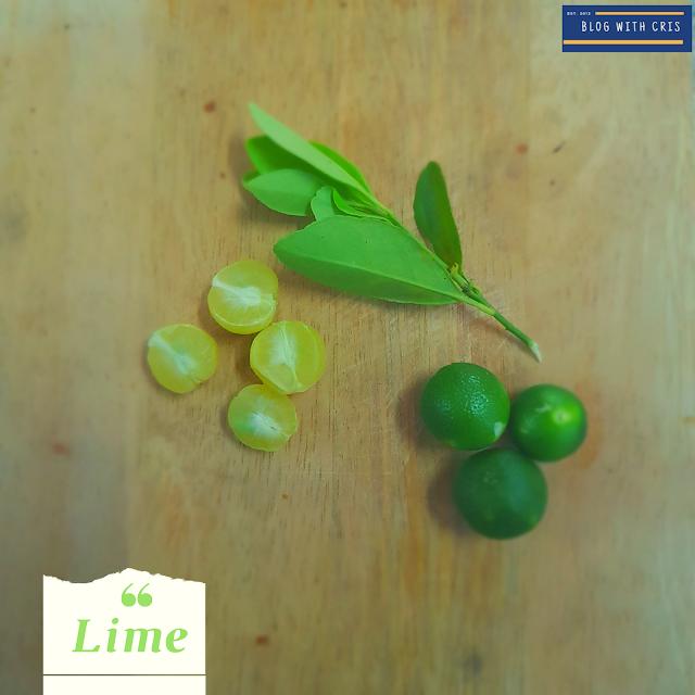 key lime pie, key lime tree, where to buy key limes, key lime benefits, key lime vs persian lime, where are key limes grown, key lime substitute, where do key limes come from, key lime, lime, limes
