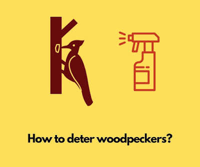 How to deter woodpeckers?