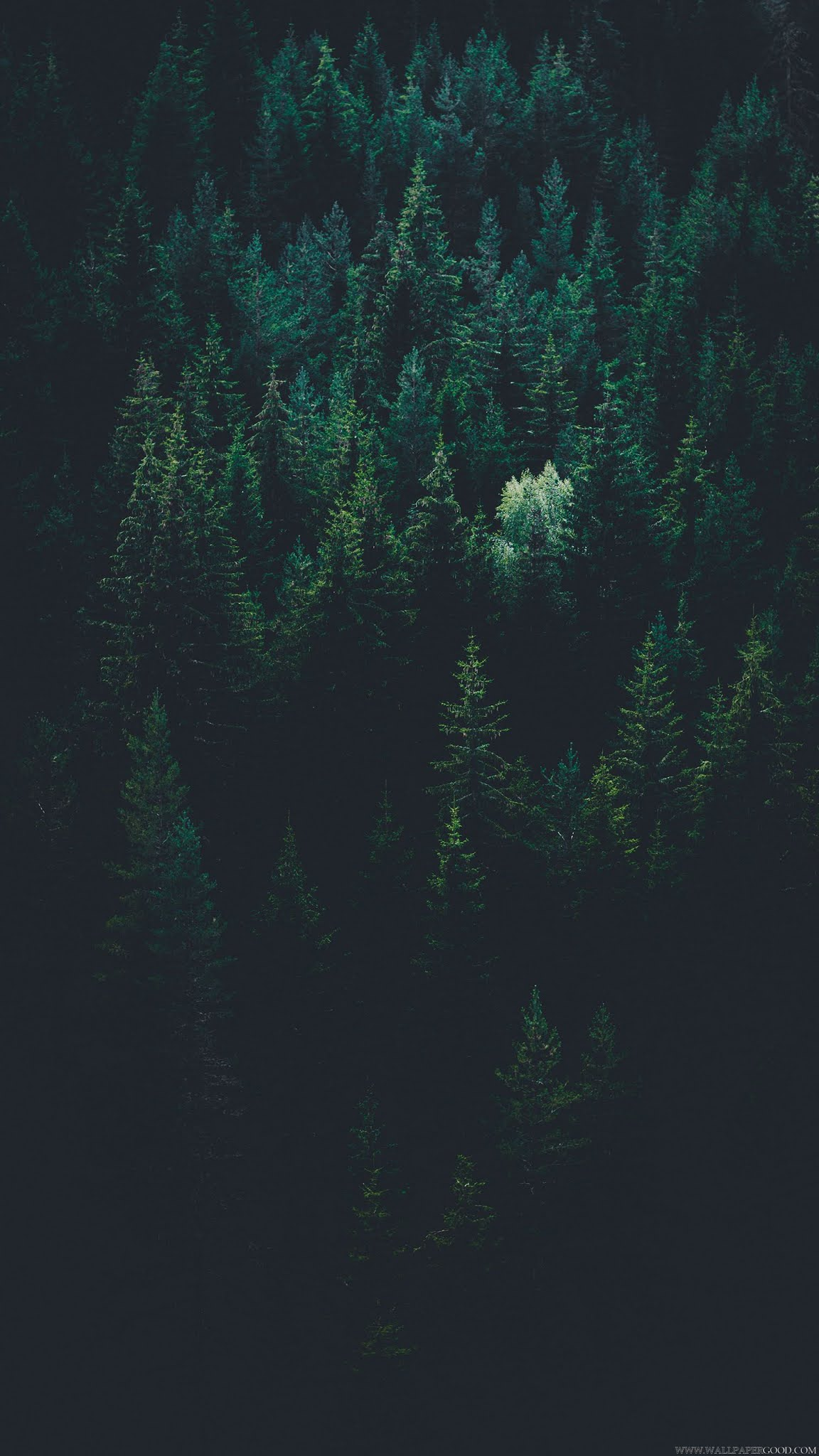 dark wallpaper for iphone x