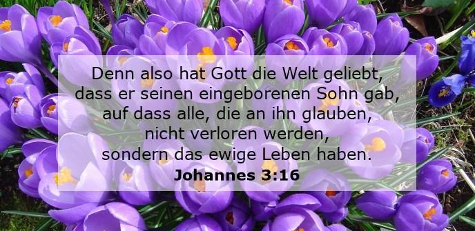 Want God had de wereld zo lief dat hij zijn enige Zoon heeft gegeven, opdat iedereen die in hem gelooft niet verloren gaat, maar eeuwig leven heeft.