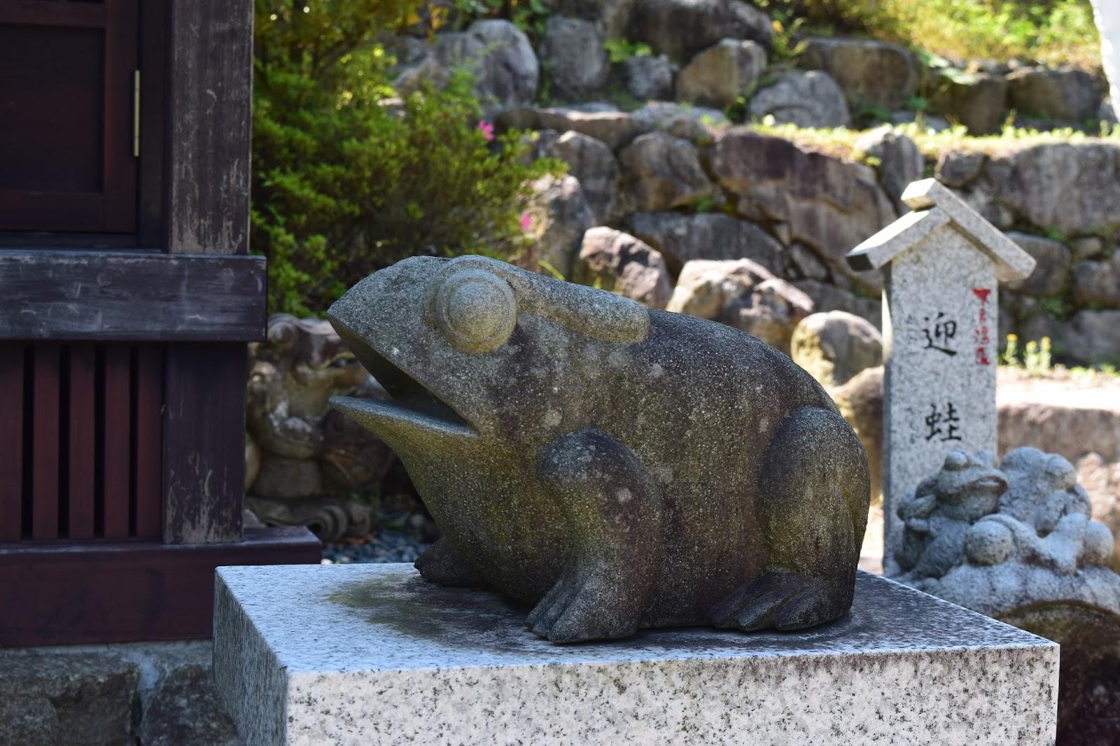 Japan shrine frog