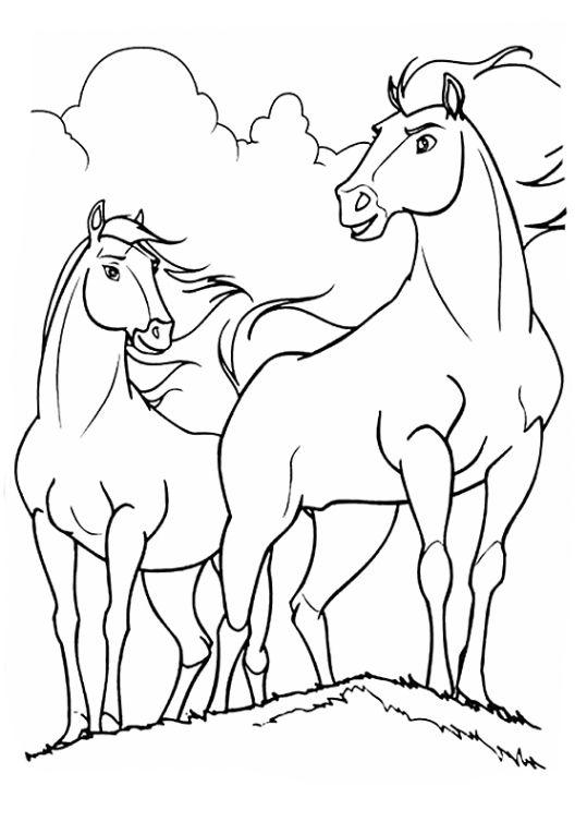 Tranh tô màu hai con ngựa dũng mãnh
