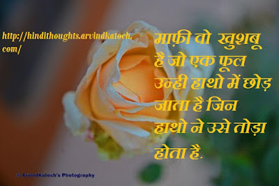 Hindi Thought, Quote, flower, forgiveness, Wallpaper