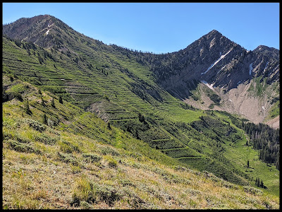 Beautiful Shingle Mill Peak on Left and Freedom Peak on the right.